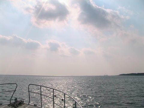 東京湾即日散骨