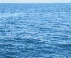 海の散骨について