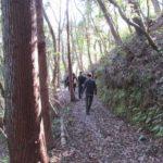 森の立会い、即日散骨-5名様まで参加で10万円